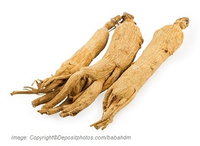 American Ginseng Adaptogens 1 Canadian Academy of Sports Nutrition caasn