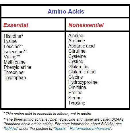 Amino Acid 1 Canadian Academy of Sports Nutrition caasn