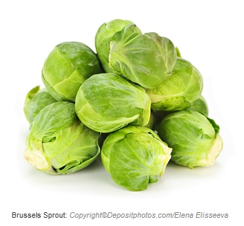 Brussels sprout. Canadian Academy of Sports Nutrition