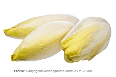 Endive. Canadian Academy of Sports Nutrition