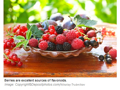 Flavonoids 1 Canadian Academy of Sports Nutrition caasn