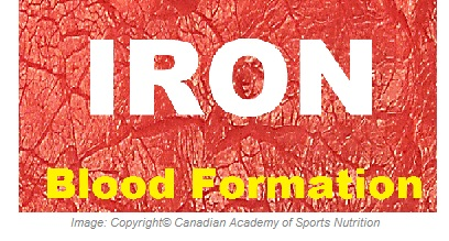 Iron 1 Canadian Academy of Sports Nutrition caasn