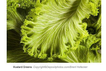 Mustard Greens. Canadian Academy of Sports Nutrition
