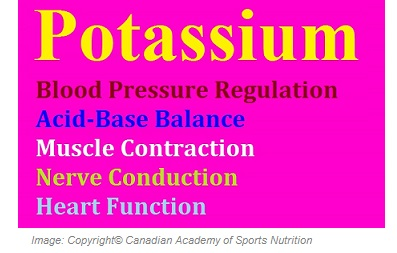 Potassium 1 Canadian Academy of Sports Nutrition caasn