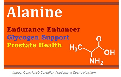 Sports Performance Enhancers ALanine 1 Canadian Academy of Sports Nutrition caasn