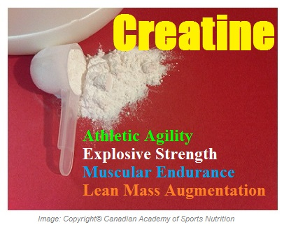 Sports Performance Enhancers Creatine 1 Canadian Academy of Sports Nutrition
