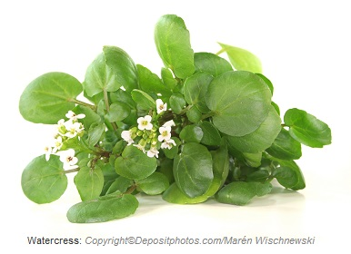 Watercress. Canadian Academy of Sports Nutrition
